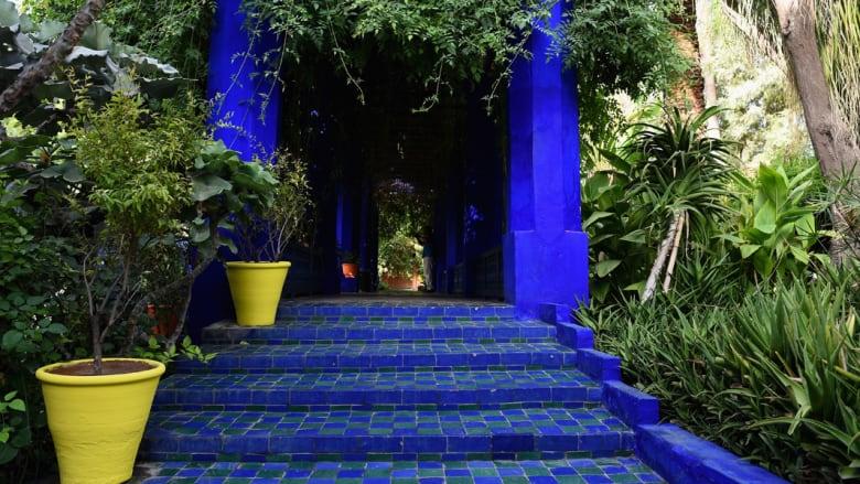 بالصور..عندما تتألق حديقة ماجوريل الساحرة في المغرب