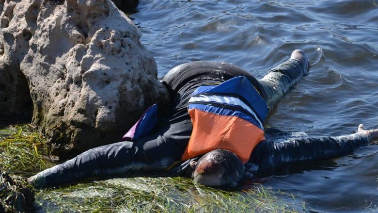 مجلس الافتاء الفلسطيني بعد كارثة غرق مئات الغزاويين: الهجرة من أرض الرباط جريمة نكراء