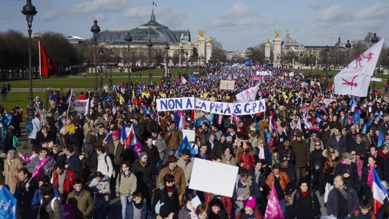 مظاهرات ضدّ الزواج المثلي في فرنسا