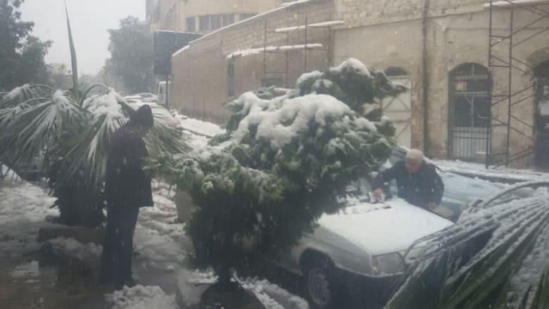 صورة بعدسة مراسلنا من مقهى في دمشق