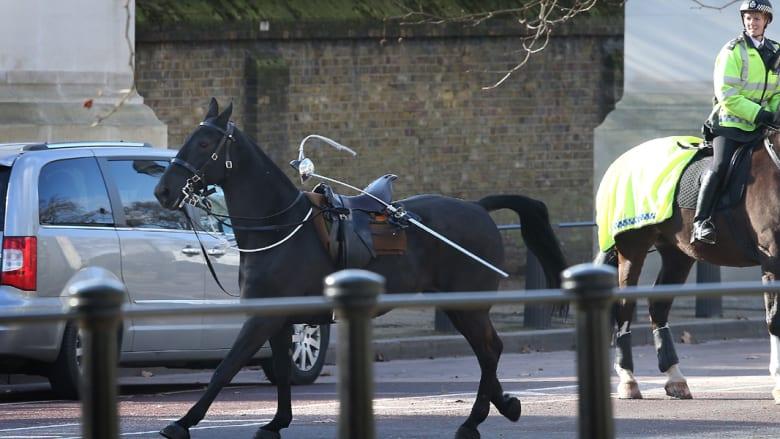 حصان يلوذ بالفرار في شوارع لندن.. ولكن ما السبب؟