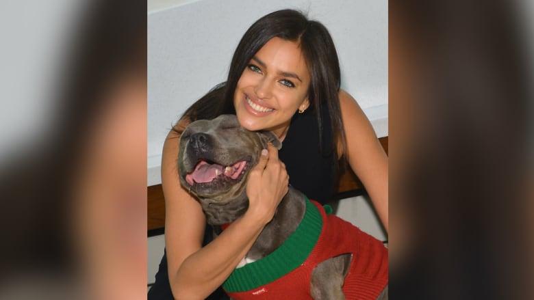 إيرينا شايك في مركز ASPCA