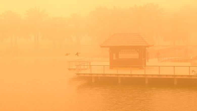 صور للعاصفة الرملية من مدينة دبي للإعلام