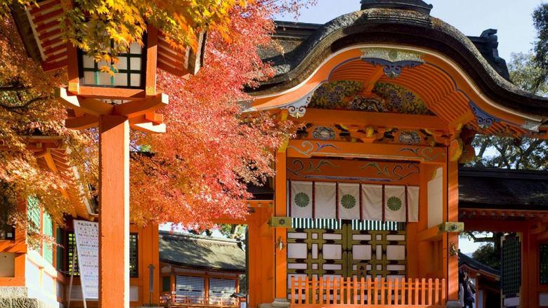بالصور.. اليابان.. بلاد السحر والغموض (الجزء الثاني)