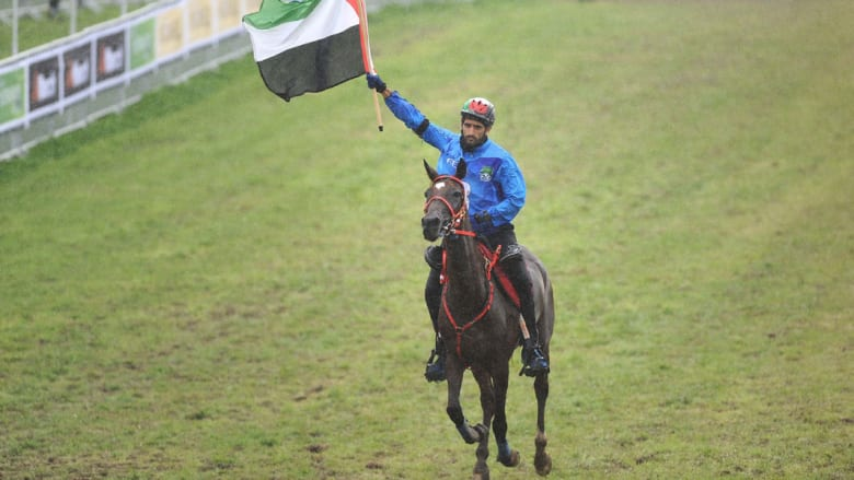 الإماراتيون والخيول.. قصة عشق لا تنتهي