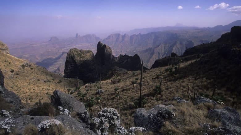 الجاذبية الإثيوبية