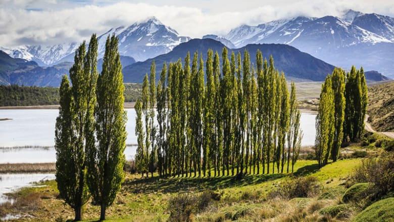 حديقة باتاغونيا (تشيلي)