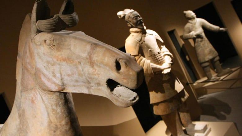 أغرب الفنون المستوحاة من الخيول