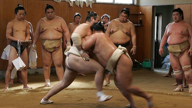 """بالصور.. ادخلوا العالم السري لـ""""اسطبلات"""" السومو اليابانية"""