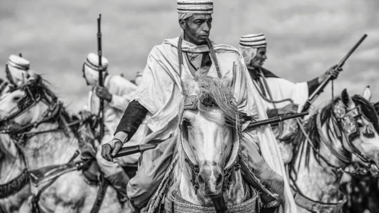 """""""الفنتازيا""""..فنون الدفاع عن النفس على ظهر الخيول تعود إلى الحياة بعد قرون طويلة في شمال أفريقيا"""