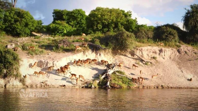 """تعرّف إلى """"جوهرة"""" بوتسوانا الجديدة..الصديقة للبيئة"""