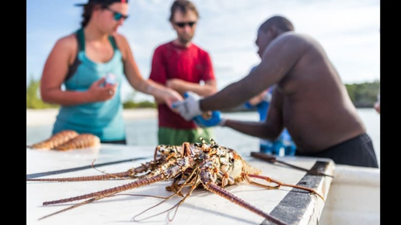 هل أنت من محبيّ زوارق الكاياك؟ لا تفوّت زيارة جزر الباهاما