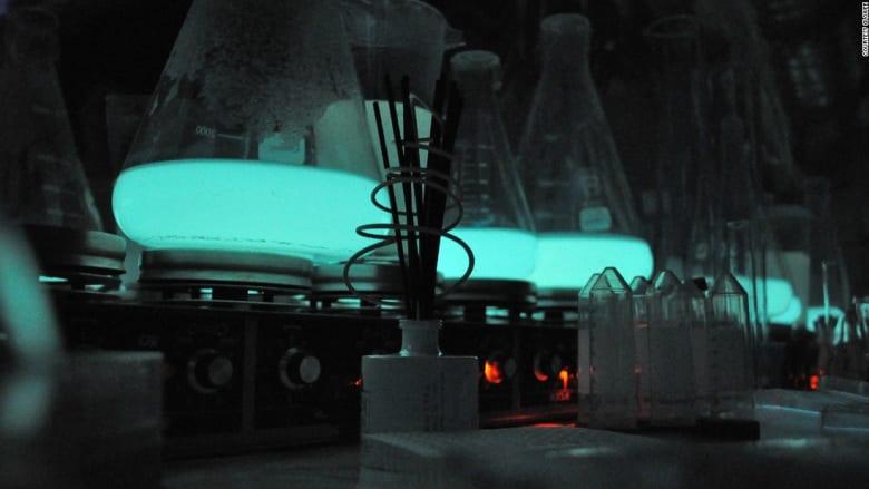 اسمنت مشع قد يحلّ مشكلة انقطاع الكهرباء حول العالم!