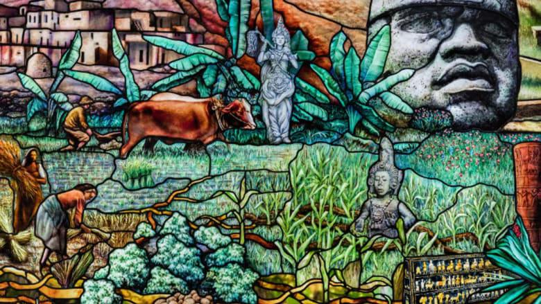 شاهد 60 ألف قطعة زجاج تروي تاريخ تطور البشرية