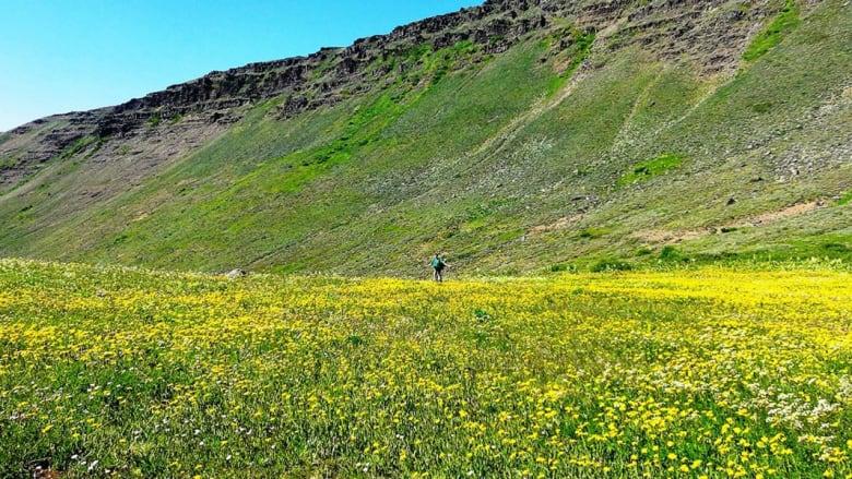 ما هي أطول 10 مسارات طبيعية في العالم؟