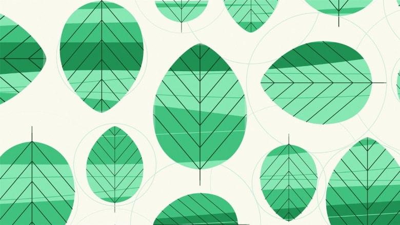 هل يصبح اللون الأخضر نادراً في المستقبل؟