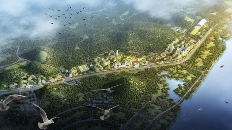 """""""مدينة الغابة"""" وسط الصين تلتهم التلوث وتنتج الأوكسجين"""