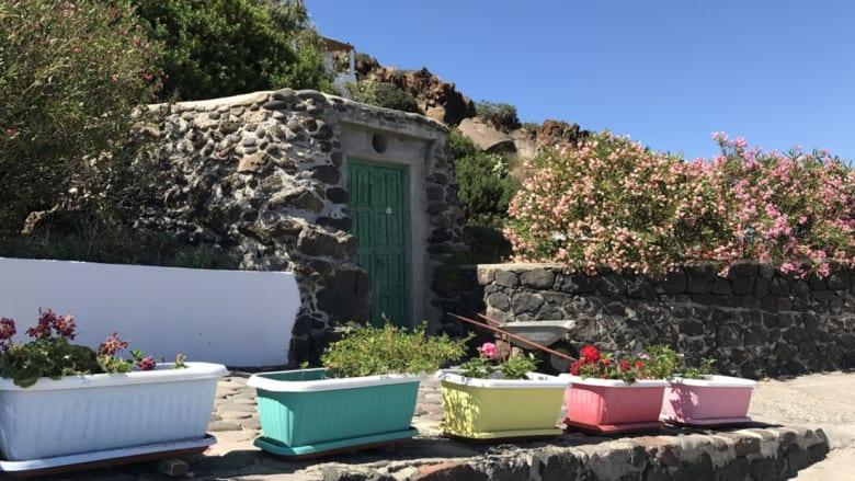 """أليكودي.. جزيرة إيطالية """"يطير"""" سكّانها ويصنع خبزها من """"المهلوسات"""""""