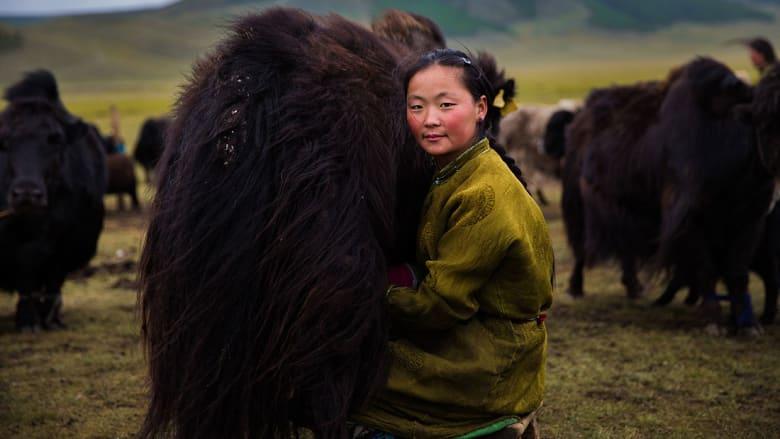 أطلس الجمال يحوي نساء العالم من الغرب إلى الشرق