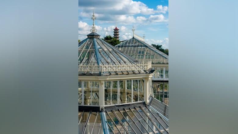 أكبر بيت زجاجي فكتوري مغلق منذ القرن التاسع عشر يفتح أبوابه مجدداً