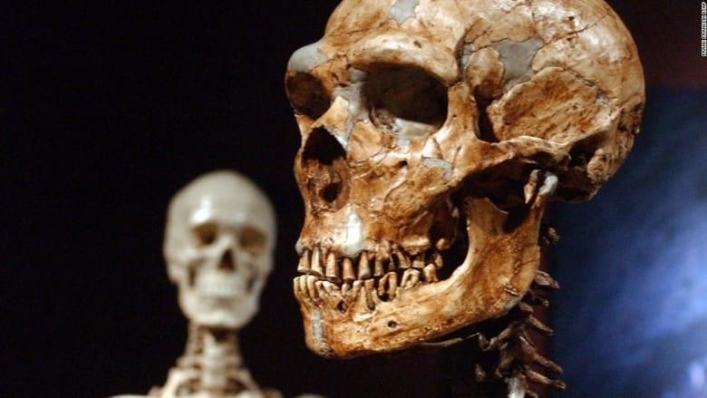 """كيف تؤثر جينات وراثية تعود لإنسان نياندرتال من عصور ما قبل التاريخ على مضعفات """"كوفيد-19""""؟"""