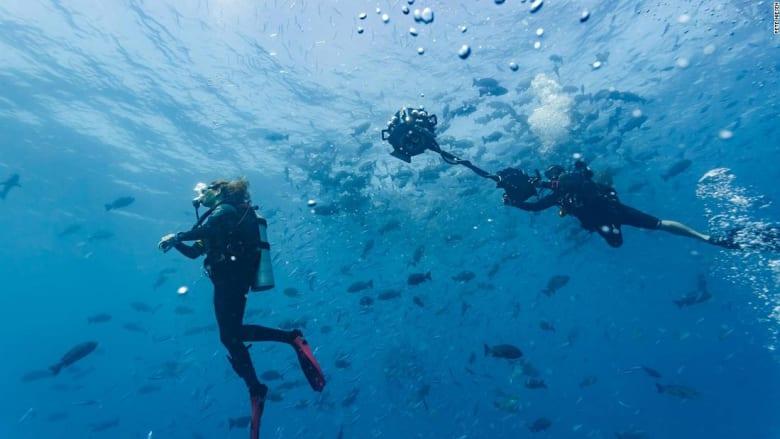 تجربة تثير ردود فعل قوية وتقرب الناس من المحيطات بجولة افتراضية غامرة