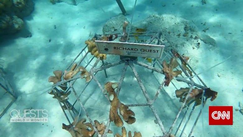 تحت رحمة البحر في إحدى أخفض دول العالم