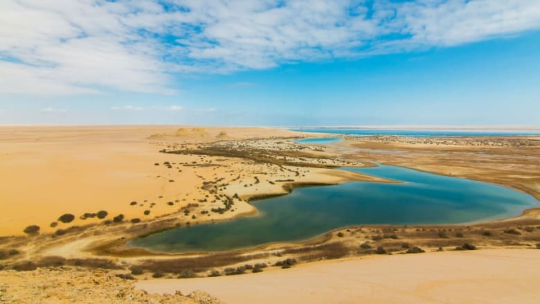 واحة الفيوم في مصر