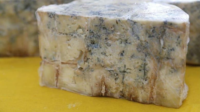 دراسة تُظهر أن الأوروبيين تناولوا الجبن الأزرق والجعة قبل 2700 عام