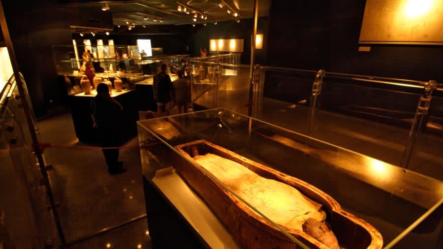 متحف التحنيط في مصر