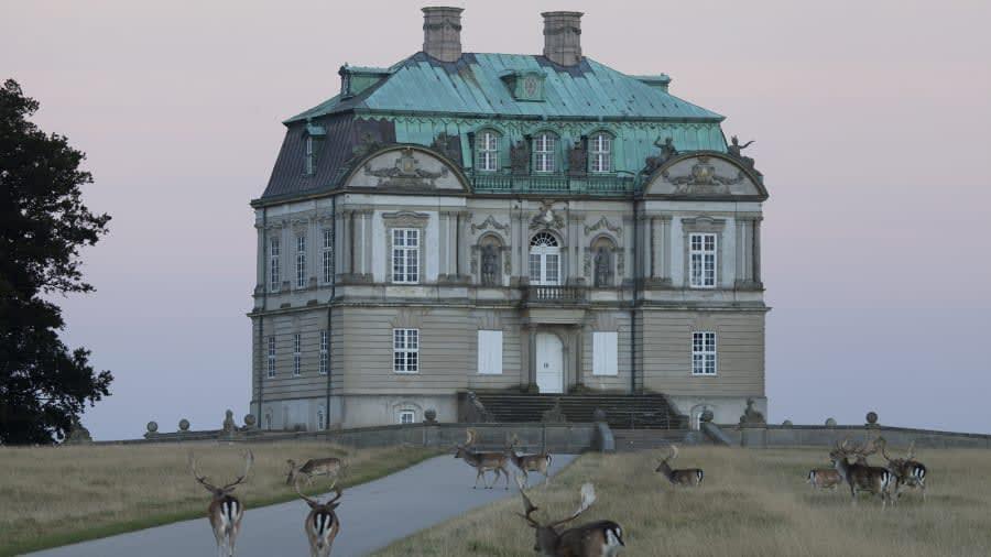 """قلعة """"هيرميتيج"""""""