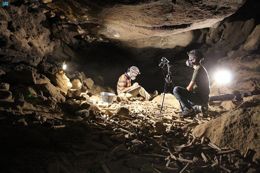 منها جماجم بشرية.. اكتشاف جديد في كهف أم جرسان بالسعودية
