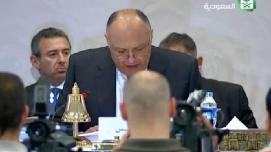 """شكري: مصر ترتب للمشاركة في """"عاصفة الحزم"""" جواً وبحراً وبراً"""