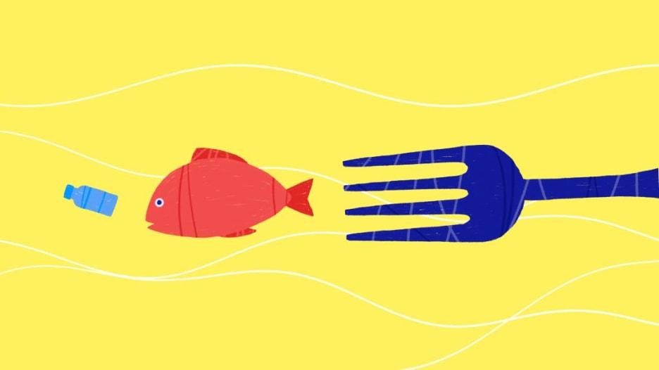هل تأكل البلاستيك في طعامك؟