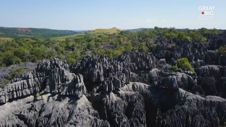 في مدغشقر.. غابة من الحجارة تشبه الشفرات الحادة