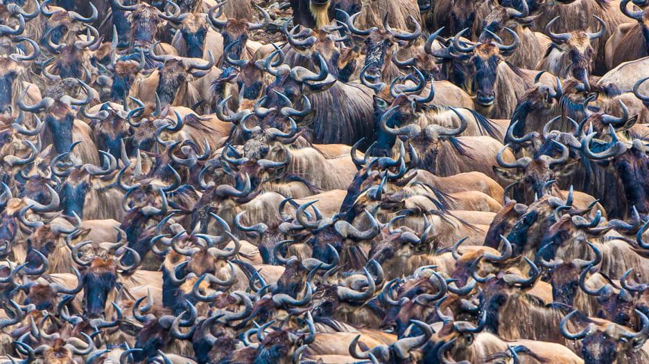 """من """"بوابات الجحيم"""" إلى وحيد القرن..هذه أجمل التجارب في كينيا"""