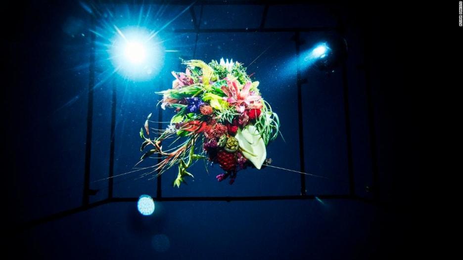 أزهار تعيش وتموت سريعاً..في الفضاء وعمق البحار وعلى الجليد