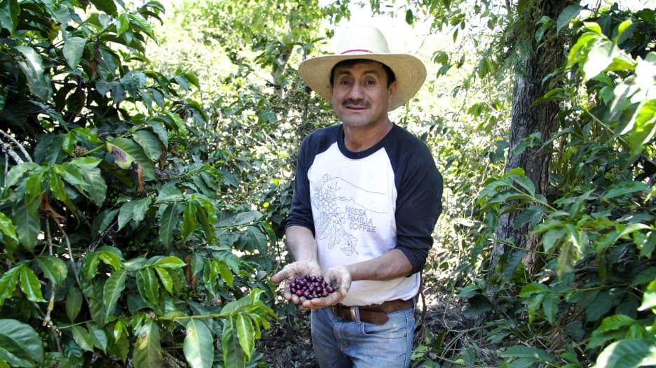 """قهوة تُحصد من بركان في غواتيمالا..ومذاقها """"سحري"""""""