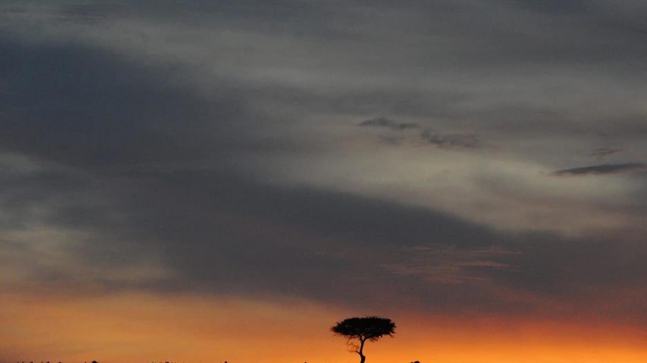 رحلة إلى كينيا في دقيقة