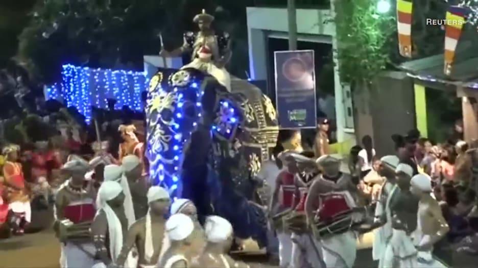 فيلان هائجان يدهسان العشرات في مهرجان بسريلانكا