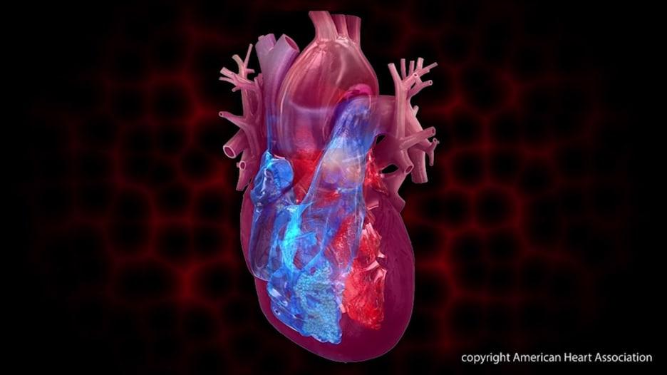 5 نصائح للأشخاص الذين يعانون من قصور القلب