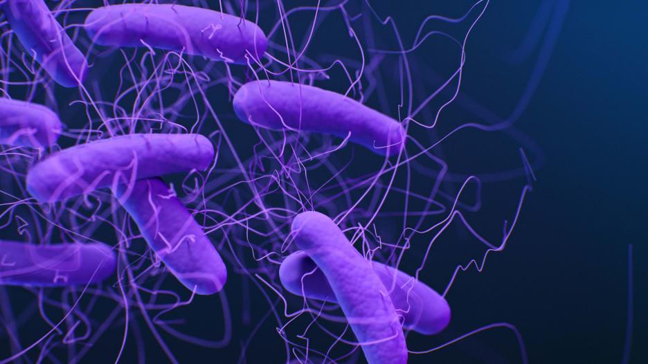 ما الجراثيم الخارقة وما علاقتها بالمضادات الحيوية؟