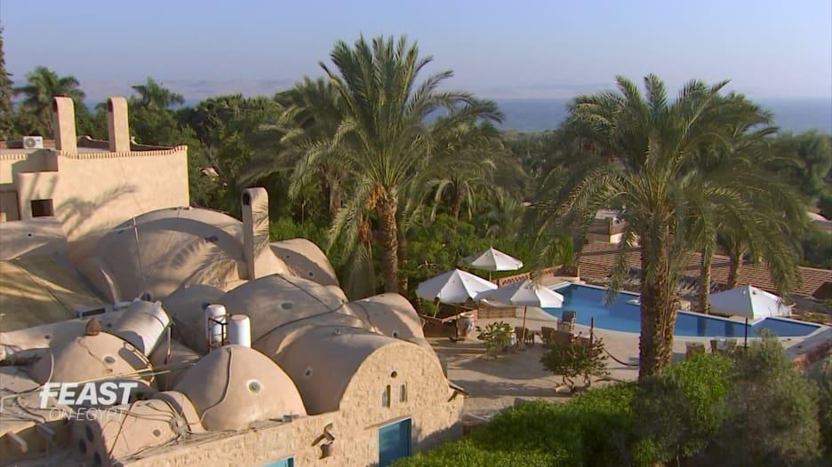 """من بستان زيتون في مصر إلى منتجع في الفيوم يقدم البط والحمام """"من المزرعة إلى الشوكة"""""""