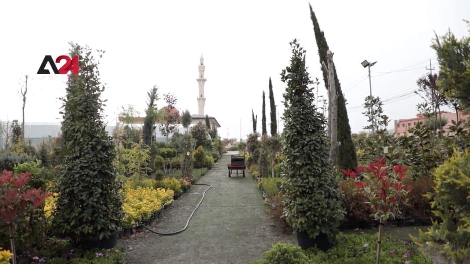 شارع خاص بالزهور في العراق يضم أكثر من 1000 نوع من الأزهار