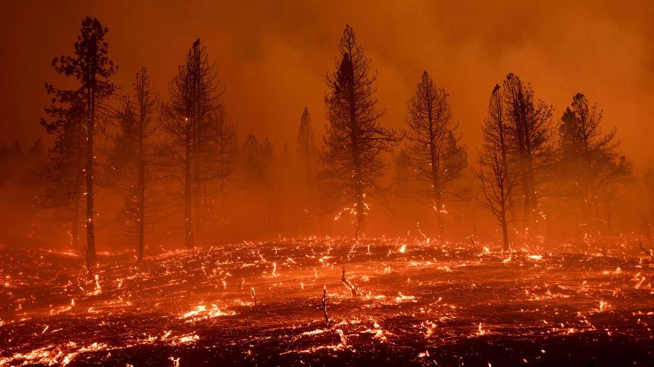 أمريكا تشهد أسوأ موسم حرائق غابات منذ عقد وتتجاوز أرقام 2020 القياسية