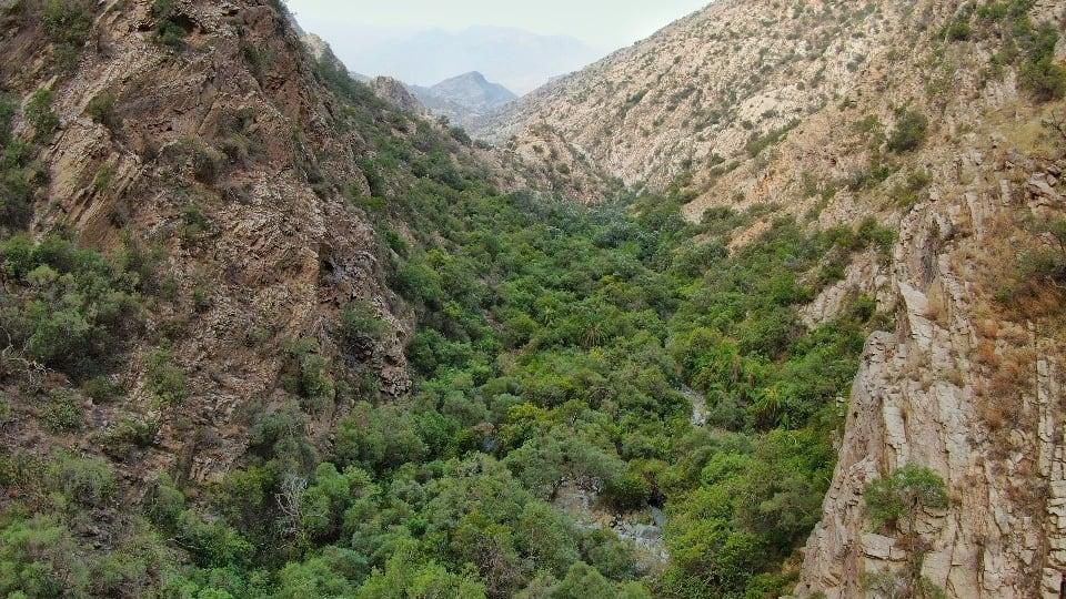 """مصور يوثق المنظر """"الخيالي"""" لجبال القهر بالسعودية"""