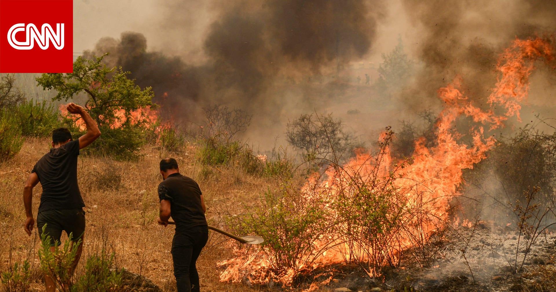 اندلاع 58 من حرائق الغابات في تركيا بعضها في نطاق وجهات سياحية حيوية