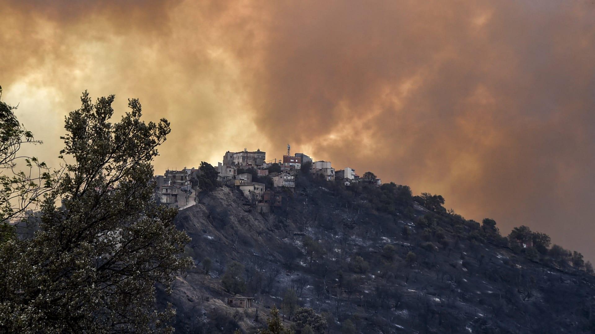مقتل 4 أشخاص وإصابة 3 أخرون إثر حرائق غابات في الجزائر