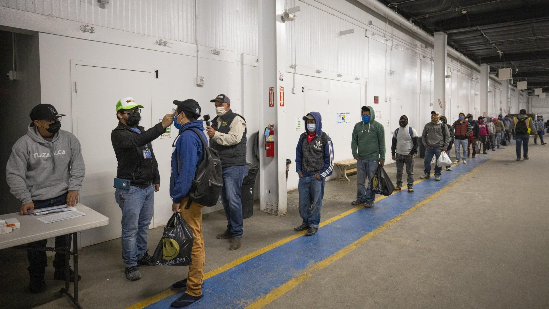 يشغلون وظائف حيوية.. العمالة المهاجرة حول العالم بالأرقام