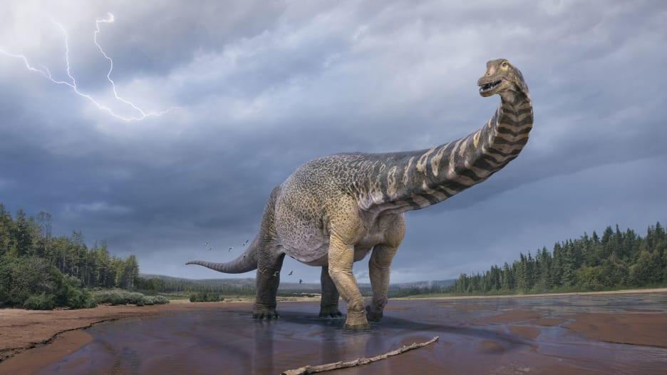تأكيد اكتشاف أكبر ديناصور في أستراليا وواحدًا من الأكبر في العالم